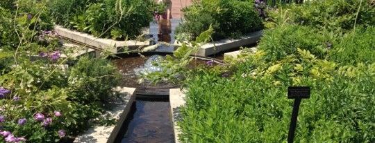 Chicago Botanic Garden is one of Hipsqueak Awards Nominees.