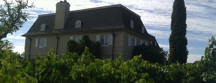 Kendall-Jackson Wine Estate & Gardens is one of Gorgeous, Burgeoning Wine Road Gardens.