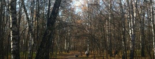 Природно-исторический парк «Кузьминки-Люблино» is one of Лучшие парки Мск.