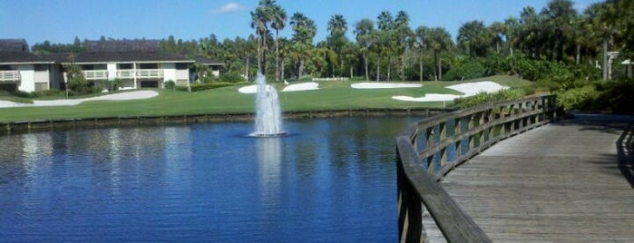 Saddlebrook Resort is one of Creative Innovations Cause Related Advertising.