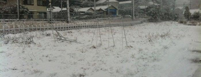 横須賀線沿いの空き地 is one of ☆.