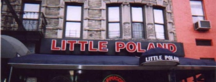 Little Poland Restaurant is one of manhattan restaurants.