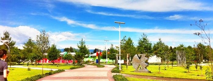 Parque Ambiental Bicentenario is one of Lugares para correr.