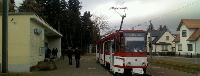 H Waldbahnwendeschleife is one of Thüringerwaldbahn.