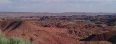 Petrified Forest National Park is one of U.S. National Parks.