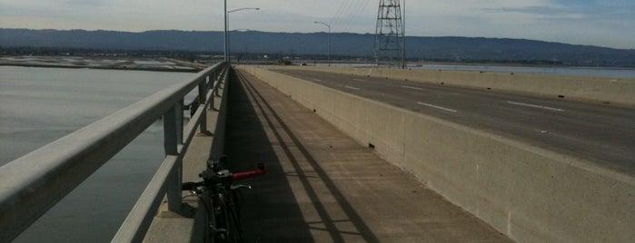 Dumbarton Bridge is one of Bridges of the Bay Area.