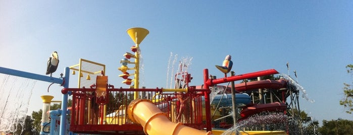 Beech Bend Park is one of Bowling Green, Kentucky Attractions.