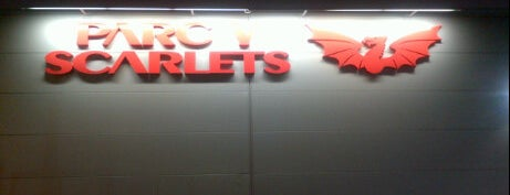 Parc y Scarlets is one of UK & Ireland Pro Rugby Grounds.