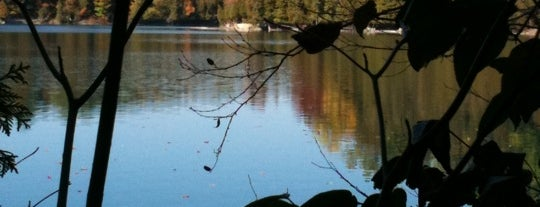 Green Lakes State Park is one of The Best Spots in Syracuse, NY #visitUS.