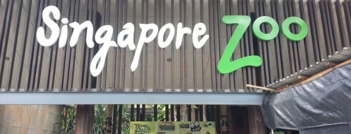 Singapore Zoo is one of Simply Singapore.