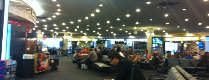 Terminal A is one of Follow @yosoyfresko @buildinvibe on twitter.