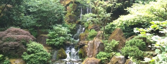 Portland Japanese Garden is one of DPP's PDX.