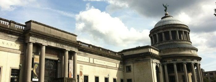 Koninklijke Musea voor Kunst en Geschiedenis / Musées royaux d'Art et d'Histoire is one of Brunchen in Brussel.