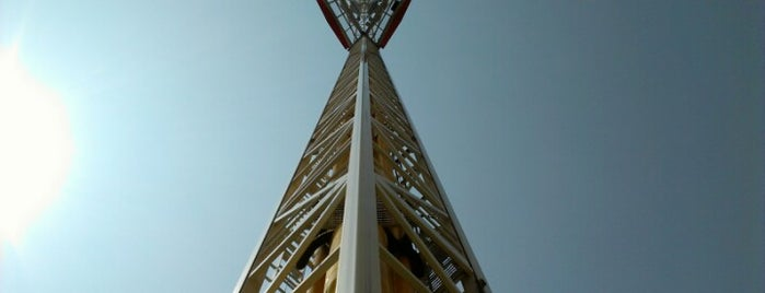 Superman Tower Of Power is one of Must-visit Theme Parks in Arlington.