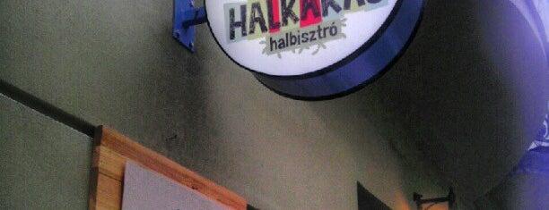 Halkakas halbisztró is one of Visszatérés javasolt!.