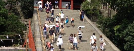 Tsurugaoka Hachimangū is one of 死ぬ前に訪れたい歴史ある場所.