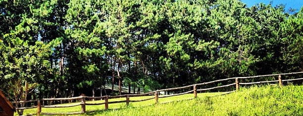 Eden Nature Park & Resort is one of Places I've been to....