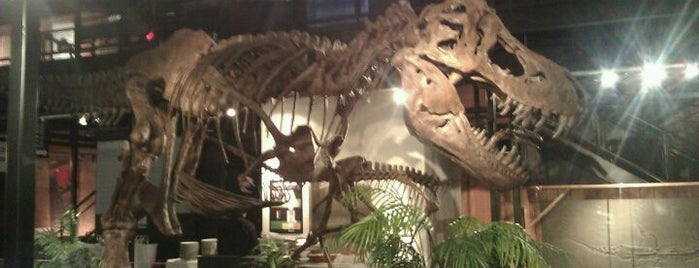 Houston Museum Of Natural Science Sugar Land is one of Best of Sugar Land #visitUS.