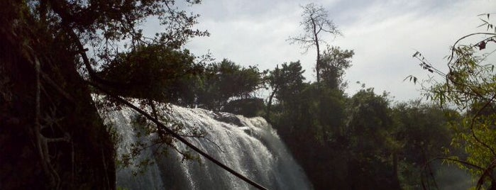 Elephant Waterfall (Thác Voi) is one of Đà Lạt.
