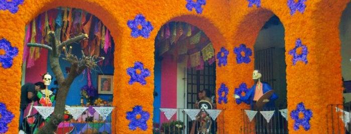 Museo Frida Kahlo is one of O que Fazer na Cd. do México.