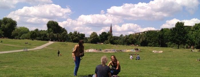 Görlitzer Park is one of Hipster Berlin.