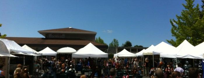 Bellevue Arts Fair is one of Gallery.