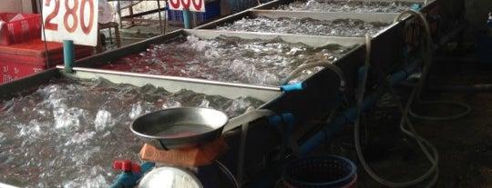 ตลาดกลางเพื่อเกษตรกร (อตก.) อยุธยา is one of All-time favorites in Thailand.