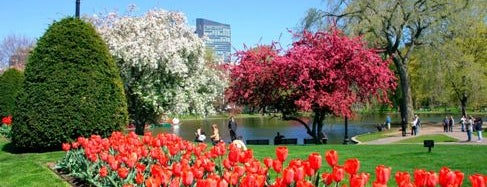 Boston Public Garden is one of Must See Boston.