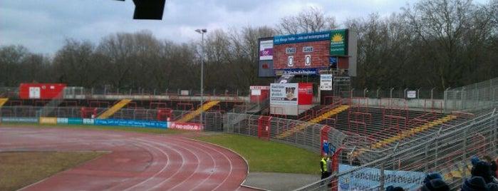 Stadion Niederrhein is one of Stadiums.