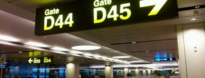 Gate D44 is one of SIN Airport Gates.