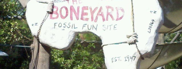 The Boneyard is one of Playgrounds.