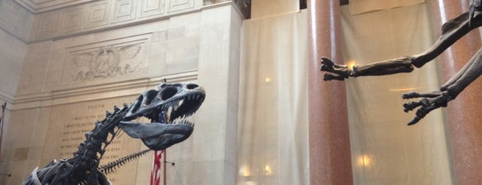 American Museum of Natural History is one of Stuff-To-Do List.