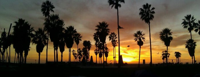 Venice Beach is one of Favorite Places.