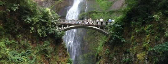 Multnomah Falls is one of Best Places to Check out in United States Pt 4.