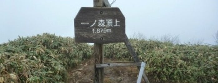 一ノ森 is one of 四国の山.