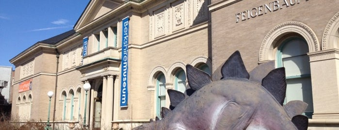 Berkshire Museum is one of Local Attractions.