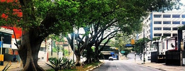 Avenida Pacaembu is one of Principais Avenidas de São Paulo.