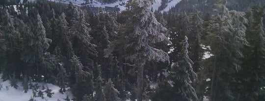 Cypress Mountain Ski Area is one of Vancouver/ Canadá.