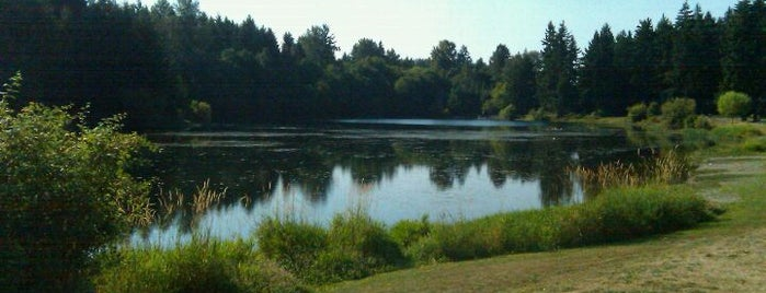 Bradley Lake Park is one of Dog walking in Tacoma.