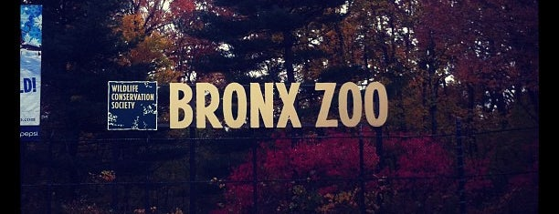 Bronx Zoo is one of Stuff-To-Do List.