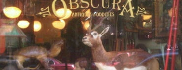 Obscura Antiques and Oddities is one of Strange Places and Oddities in NYC.