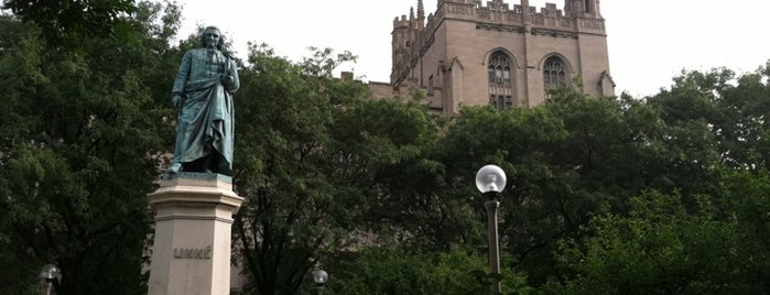 The University of Chicago is one of Leadership Institute: Chicago.