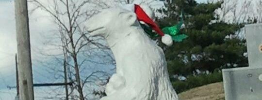 Nashville Polar Bears is one of Nashville To Do.