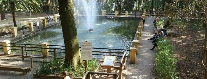 Parque da Água Branca is one of em Sampa.