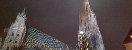 Stephansdom | St. Stephen's Cathedral is one of Vienna City Badge - Blue Danube.