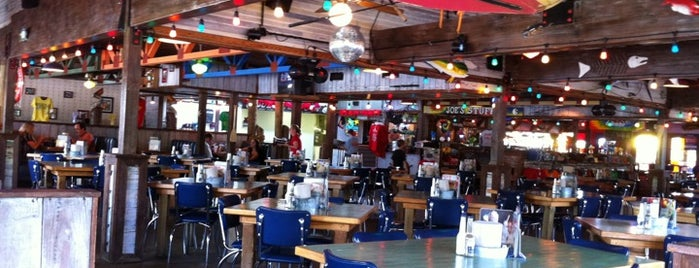 Joe's Crab Shack is one of Top 10 dinner spots in Greenwood, IN.