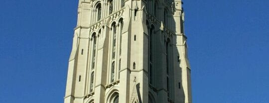 Riverside Church is one of Gray Line New York's Uptown Loop.