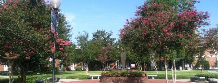 Polk Hall, NSU is one of Nicholls State University.