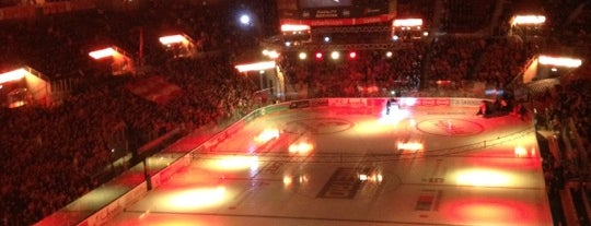 ISS Dome is one of JYM Hockey Arenas TOP100.