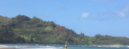 Hanalei Beach is one of Kauai Favorites.